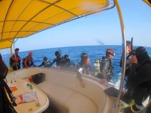 沖縄 ダイビング 粟国 ドリフト