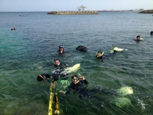 沖縄 ダイビング ネイチャーワークス