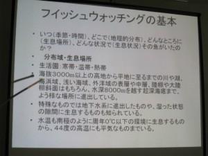 沖縄 ダイビング ガイドダイバー研修会