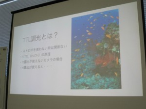沖縄 ダイビング 水中カメラ