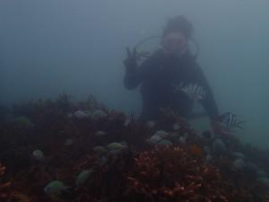 沖縄 ダイビング ビーチ体験 那覇シーサイドパー