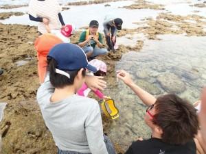 沖縄 ダイビング サンゴ礁ウィーク 磯観察