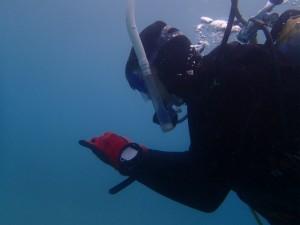 沖縄 ダイビング ライセンス OWD オープンウォーター