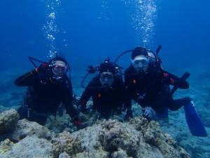 沖縄 ダイビング 体験 慶良間