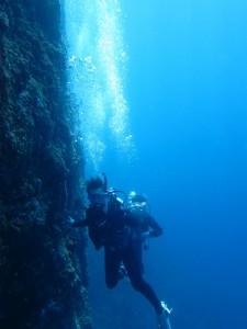 沖縄 ダイビング 慶良間 体験 FUN ファン