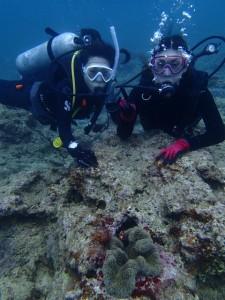 沖縄 ダイビング 体験 FUN 砂辺