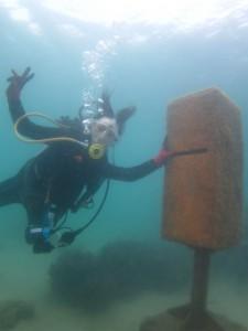 沖縄 ダイビング 水中ポスト