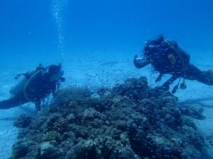 沖縄 ダイビング ライセンス講習 オープンウォーター