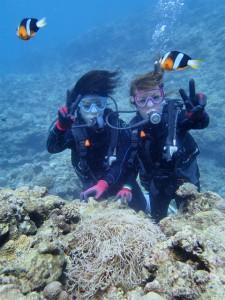 沖縄 ダイビング 青の洞窟 真栄田岬 体験ダイビング
