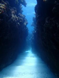 沖縄 ダイビング 慶良間 チービシ 体験ダイビング