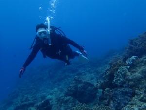 沖縄 ダイビング OWDコース ライセンス講習