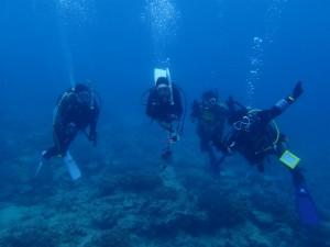 沖縄 ダイビング 近海ボート FUN