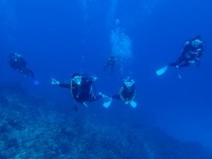 沖縄 ダイビング 慶良間 大晦日