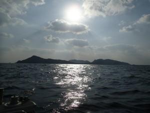 沖縄 ダイビング 渡名喜島 調査