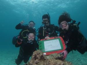 沖縄 ダイビング 本島近海 FUN 体験