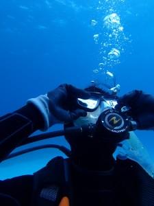 沖縄 ダイビング PADI ライセンス講習