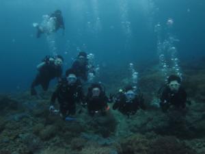 沖縄 ダイビング 近海 体験