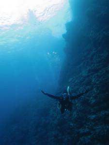 沖縄 ダイビング けらま