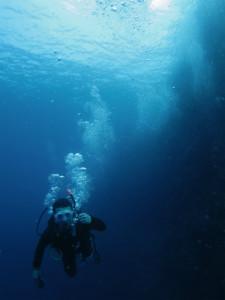 沖縄 体験ダイビング 慶良間