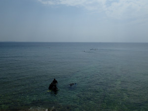沖縄 ダイビング 砂辺 保全活動