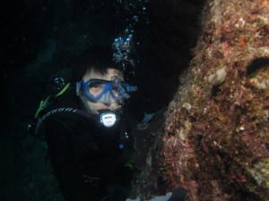 沖縄 ダイビング キスジカンテンウミウシ