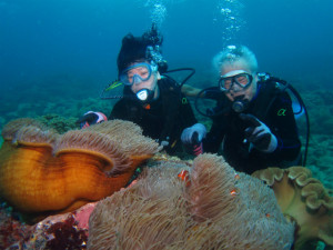 沖縄 ダイビング 体験ダイビング 宜野湾