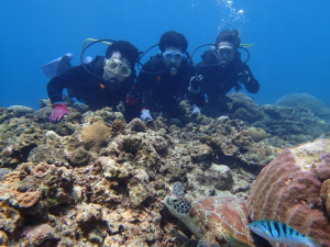沖縄 ダイビング ケラマ 体験ダイビング