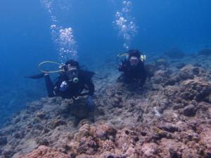沖縄 ダイビング 慶良間 体験ダイビング