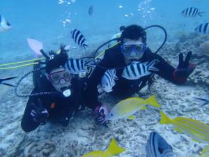 沖縄 ダイビング 慶良間 青の洞窟 体験ダイビング