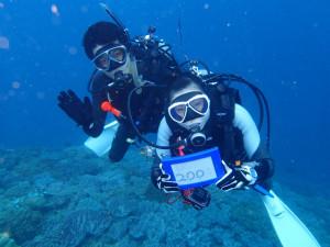 沖縄 ダイビング 近海FUNダイビング