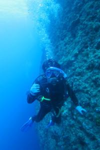 沖縄 ダイビング ホーシュー