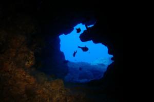 沖縄 ダイビング うさぎ穴