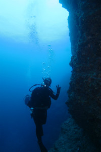 沖縄 ダイビング 黒島