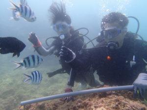 沖縄 ダイビング砂辺 体験ダイビング