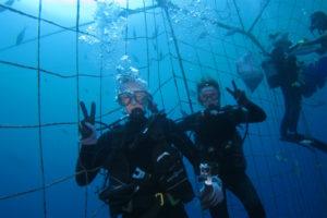 沖縄 ダイビング ジンベイの網