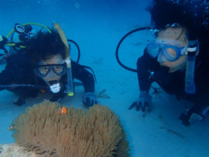 沖縄 体験ダイビング クマノミ