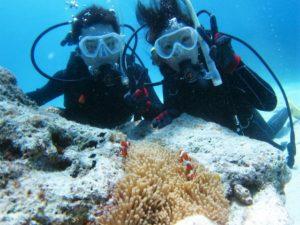 沖縄 ダイビング 体験ダイビング 砂辺 ビーチ体験ダイビング