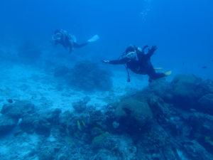 沖縄 ダイビング 慶良間 FUNダイビング AOW講習
