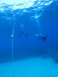 沖縄 ダイビング 万座 透明度抜群