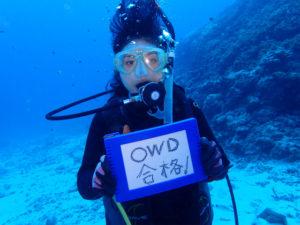 沖縄 慶良間 体験ダイビング FUNダイビング OW講習 ダイビング