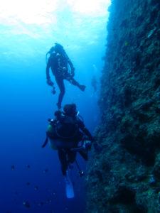沖縄 ダイビング 万座 ホーシュー