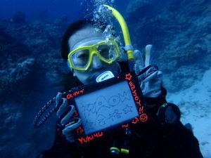 沖縄 慶良間 ダイビング PADI講習 体験ダイビング