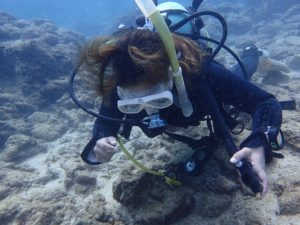 沖縄 砂辺 ダイビング OW講習
