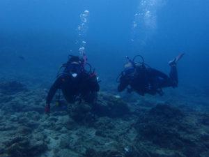 沖縄 ダイビング ライセンス講習 PADI