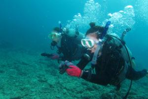 沖縄 ダイビング コンパス