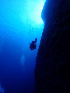 沖縄 万座 恩納村 ダイビング FUNダイビング