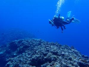 沖縄 本島 ファンダイビング ダイビング 宜野湾
