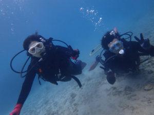 沖縄 本部 ゴリラチョップ ダイビング 体験ダイビング