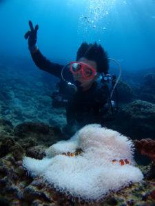 沖縄 体験ダイビング カクレクマノミと