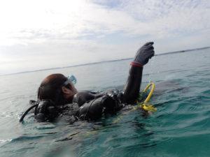 沖縄 東海岸 金武 レッドビーチ ダイビング OW